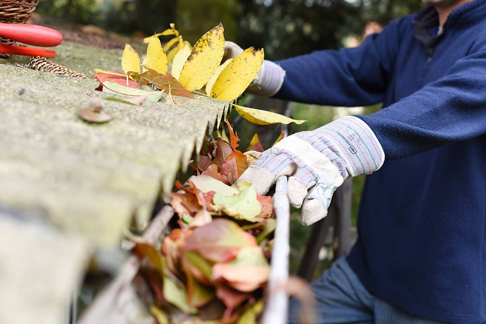 gutter-cleaning-contractor